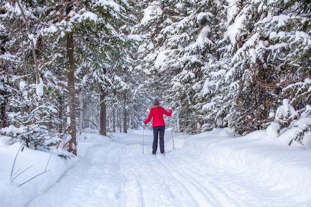 Dziewczyna w czerwonej kurtce jeździ na nartach zimą w zaśnieżonym lesie. widok z tyłu. śnieg tło z nartami między drzewami.