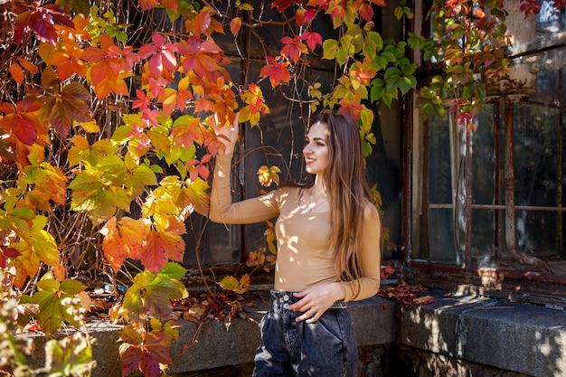 Dziewczyna z długimi włosami w body i dżinsach pozuje w jesiennym parku na tle ściany porośniętej dzikimi winogronami. dziewczyny w parku na tle dzikich winogron