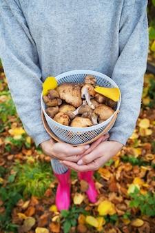 Dziewczyna z koszem grzybów