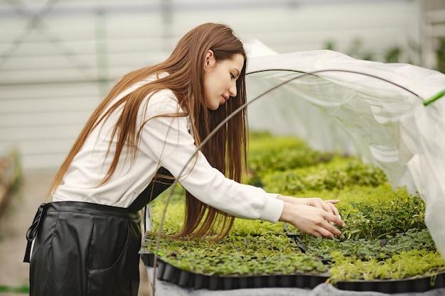 Dziewczyna z kwiatami w szklarni. ogrodnik w fartuchu. pielęgnacja kwiatów.