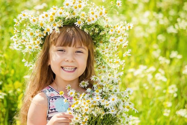 Dziewczyna z rumianku. selektywna ostrość. kwiaty natury.