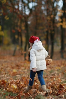Dziewczyna zbiera grzyby w lesie jesienią