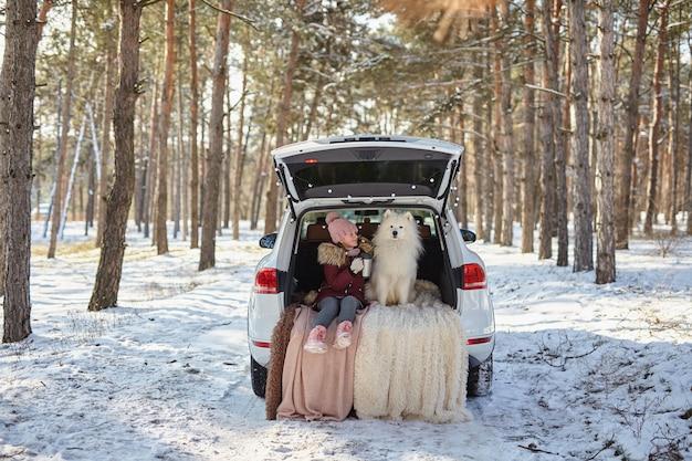 Dziewczynka siedząca w bagażniku samochodu ze swoim zwierzakiem, biały pies samoyed, zimą w zaśnieżonym sosnowym lesie, dziewczynka pijąca herbatę z termosu
