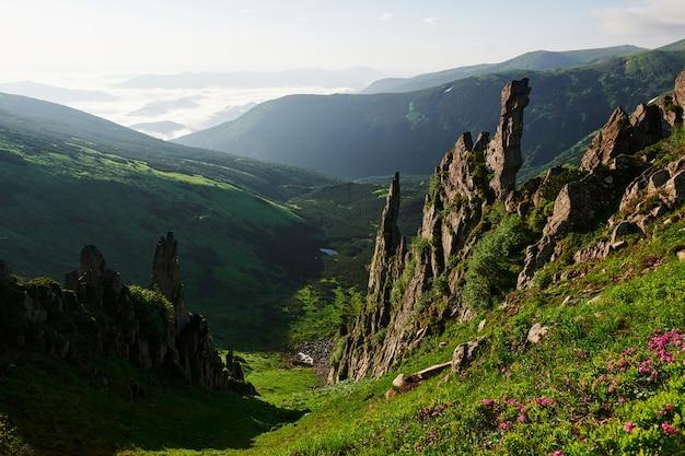 Dziewicza przyroda. majestatyczne karpaty. piękny krajobraz. widok zapierający dech w piersiach.