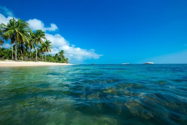 Dziewicza tropikalna plaża na sri lance