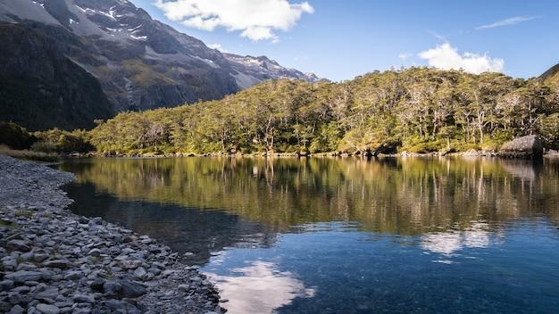 Dziewicze jezioro alpejskie otoczone drzewami i góraminiebieskie jeziora lakenelson nowa zelandia