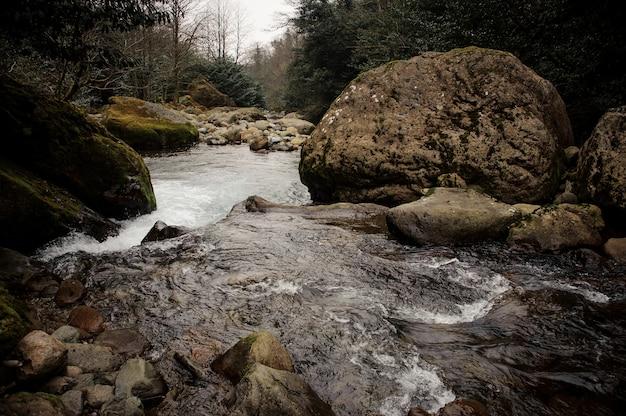 Dzika górska rzeka płynie otoczona przez porośnięte mchem kamienie i bujne liście w łaźniach afrodyty w gruzji