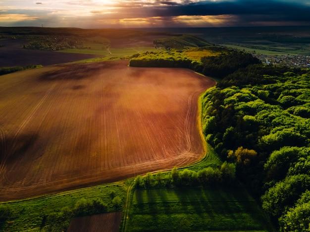 Dzika przyroda z góry. zachód słońca