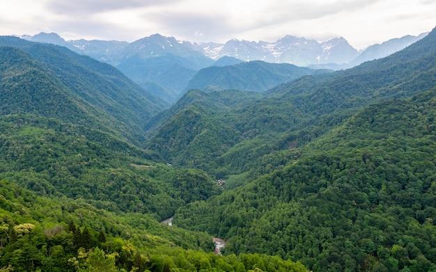 Dziki krajobraz gruzińskich gór. miłośnik zielonych drzew i śniegu na wzgórzach w oddali