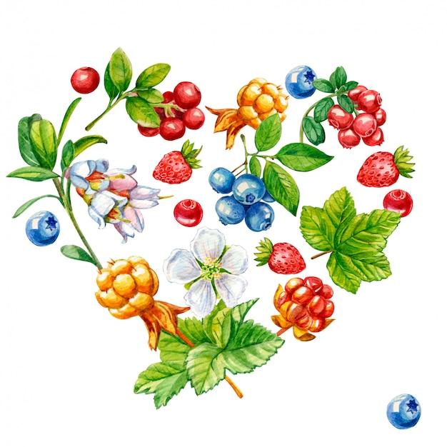 Dzikie jagody w kształcie serca na białym tle