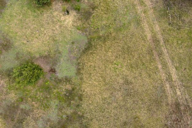 Dzikie pole widok z góry strzelanie z dronów w tle