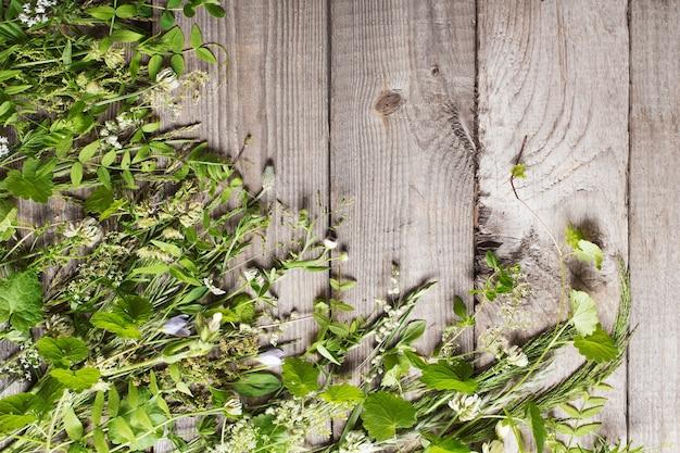 Dzikie rośliny na stare ciemne drewniane tła
