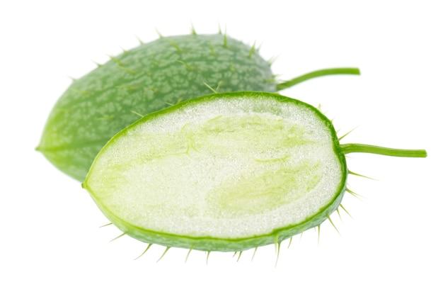 Ecballium na białym tle ecballium elaterium lub strąki dzikiego ogórka
