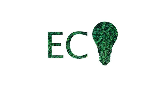 Eco logo z zielonych liści na białym tle. żarówka. koncepcja ochrony środowiska.