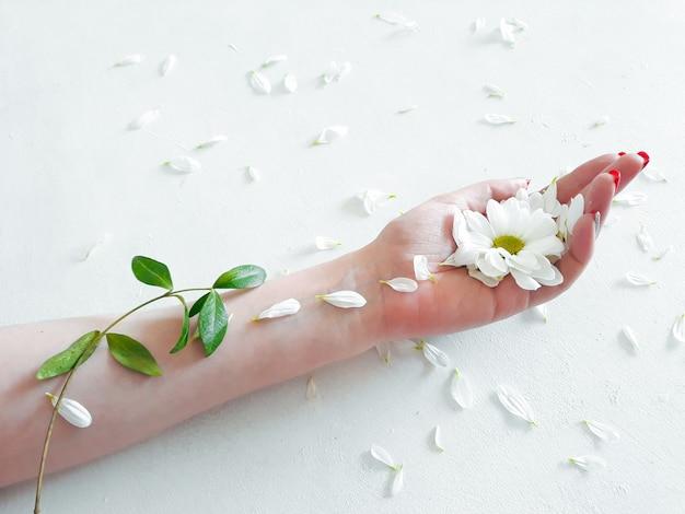 Eco nature flora organiczna pielęgnacja dłoni w płatkach kwiatów