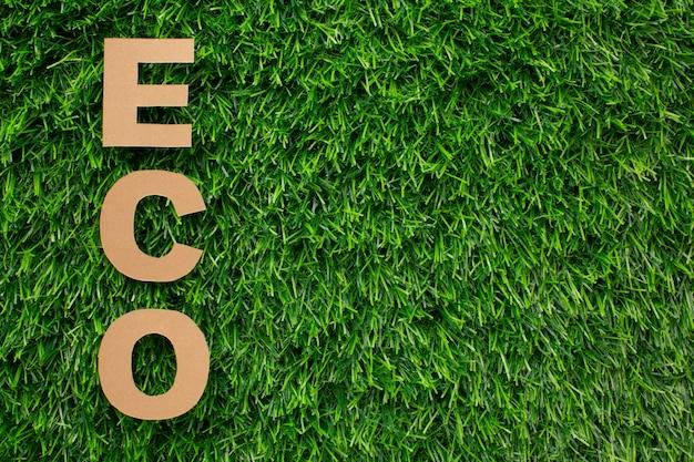 Eco słowo w trawie z przestrzenią