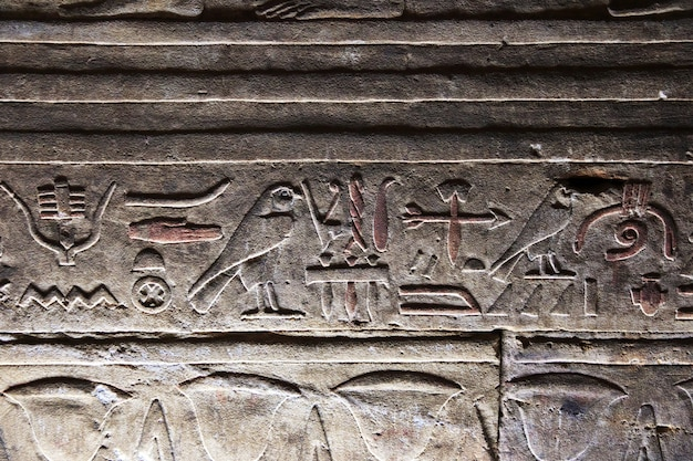 Edfu świątynia na nilu w egipt