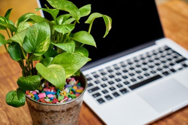 Edukacja drewniany styl życia relaks klawiatury komputera