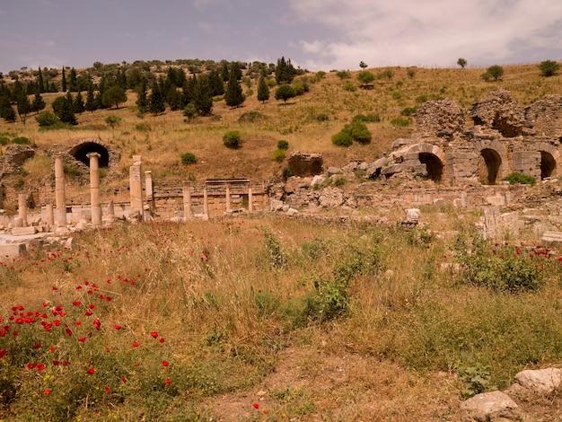 Efez w kusadasi turcja