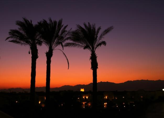 Egipt zachód słońca