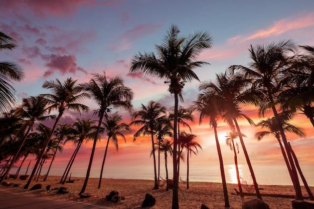 Egzotyczny krajobraz tropikalnej plaży na tle lub tapetę. scena na plaży o zachodzie słońca inspirująca do podróży, wakacji i koncepcji wypoczynku relaksującego w turystyce.