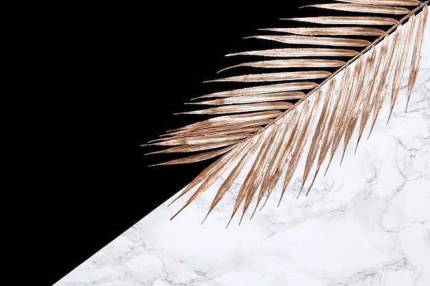 Egzotyczny złoty liść palmy na tle czerni i marmuru. skopiuj miejsce ozdobny modny szablon na płasko, reklamę,
