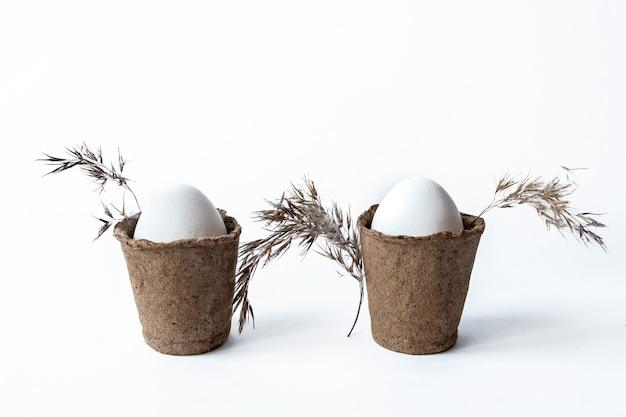 Ekologiczna koncepcja z białymi jajkami wielkanocnymi. sznurek, trawa pampasowa.