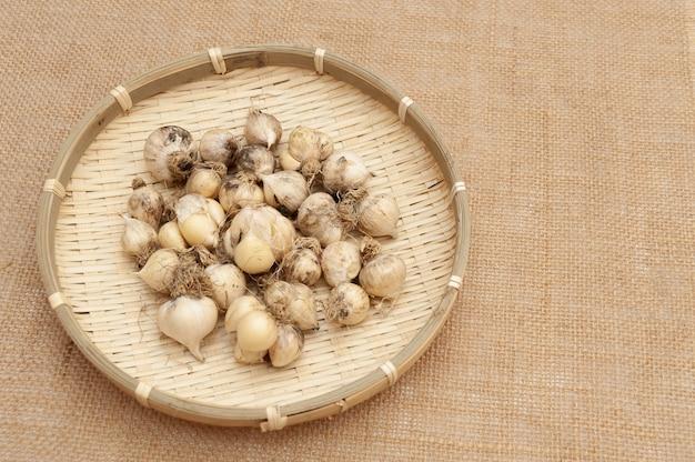 Ekologiczny czosnek (allium sativum) w bambusowym koszyku. pojedynczo na tkaninie z juty.