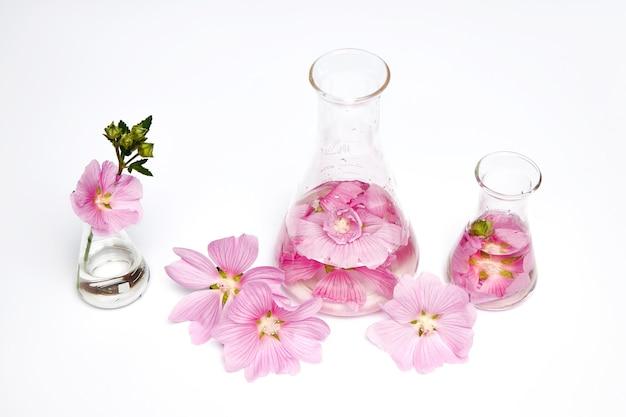 Ekstrakt w butelkach z płatków kwiatowych kosmetyków naturalnych. naturalny produkt ekologiczny z roślin i kwiatów, kosmetyki ziołowe w tubkach do pielęgnacji skóry. natura uroda nauka medycyna badania laboratoryjne