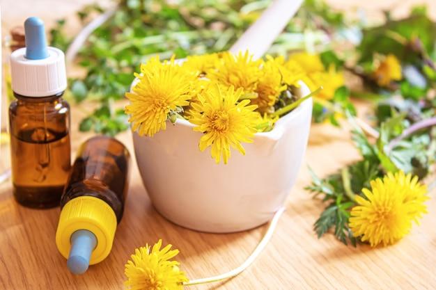 Ekstrakt z glistnika mniszka lekarskiego w małej butelce, leczenie, lekarstwo, nalewka. selektywne skupienie.natura