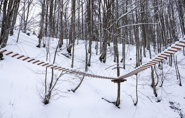 Ekstremalny park linowy pokryty śnieżnobiałym śniegiem