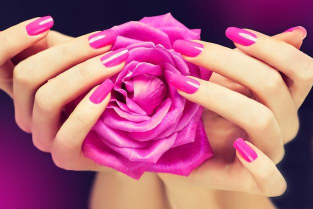 Eleganckie kobiece dłonie z różowym manicure na paznokciach. piękne, smukłe i wdzięczne palce czule trzymają rozłożony pączek róży. manicure i kosmetyki.