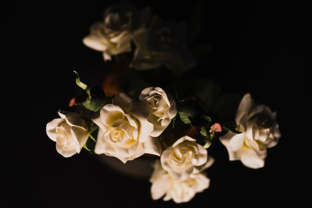 Eleganckie róże w doniczce