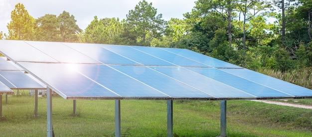 Elektryczny system wytwarzania energii słonecznej w lesie