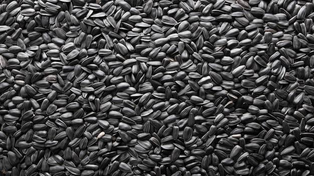Element projektu lub naturalna tekstura. nasiona słonecznika jakby wyblakłe, naturalne tło.