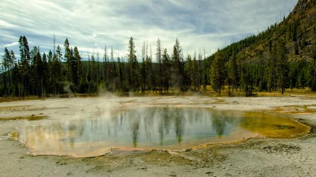 Emerald pool w yellowstone z odbiciem drzew