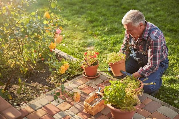 Entuzjastyczny starzejący się mężczyzna uśmiechający się i patrzący na doniczkową roślinę doniczkową w swoich rękach, kucając w ogrodzie