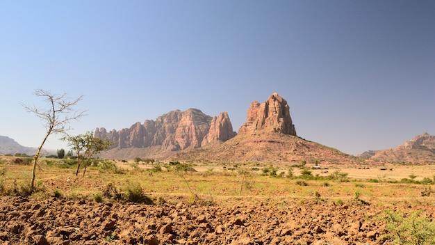 Etiopski krajobraz w regionie tigray