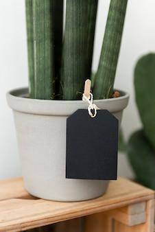 Etykieta na szarej doniczce z rośliną