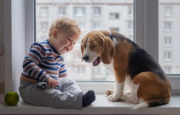 Europejski chłopiec i pies beagle siedzą i bawią się na parapecie w pokoju