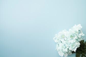 Fałszywe niebieskie kwiaty na rogu tła