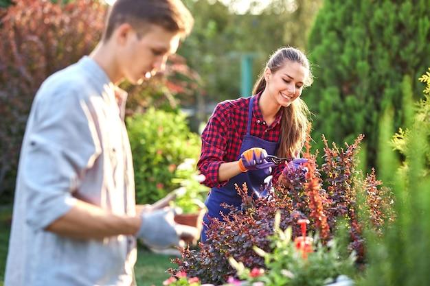 Facet ogrodnik w rękawiczkach ogrodniczych stawia doniczki z sadzonkami w białej drewnianej skrzynce na stole, a dziewczyna przycina sadzonki w cudownym ogródku w słoneczny dzień. .