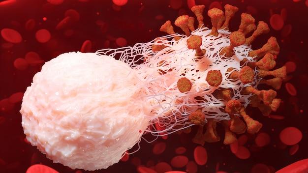 Fagocytoza immunologiczna białych krwinek koronawirus covid-19 infekcja komórek komórki choroby renderowanie 3d ilustracja
