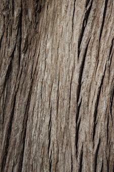 Faktura ciemnobrązowego starego drewna. kora drzewa, drewniane tła. szeroka deska tekstura zbliżenie, panoramiczny baner.