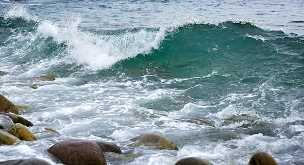 Fala sztormowa na wybrzeżu arktyki