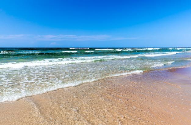 Fale płynące z pianą po drobnym piasku bałtyku, letni krajobraz nad morzem w sierpniu, zimna północna pogoda blisko letniego morza