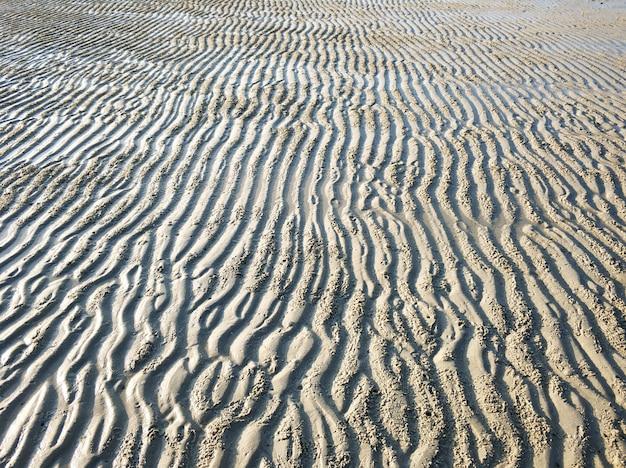 Falista powierzchnia piaszczystego dna oceanu w pobliżu brzegu podczas odpływu.