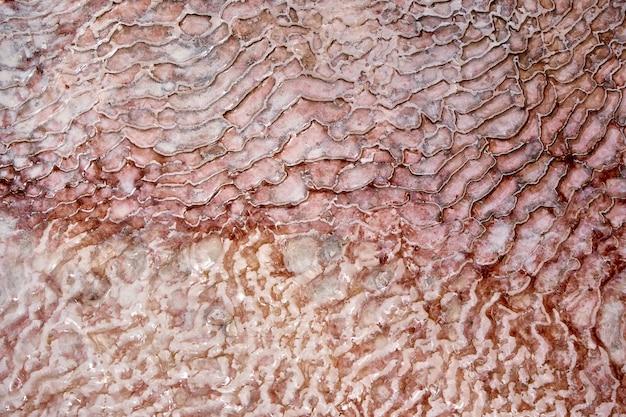 Faliste tekstura tło białych stalaktytów kalcytu pokrywających kaskadę kąpieli tarasowych w pamukkale
