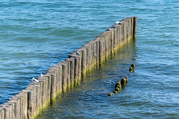 Falochron na plaży. drewniany separator morski. piękny pejzaż morski. ochrona wczasowiczów przed skutkami zarówno pogody, jak i dryfu na brzegu.