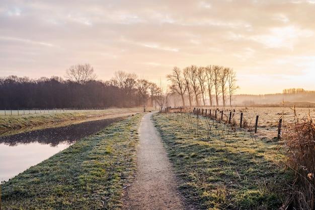 Fantastyczna spokojna rzeka ze świeżą trawą o zachodzie słońca. piękny zielony zima krajobraz na zimnym dniu w ranku w holandiach